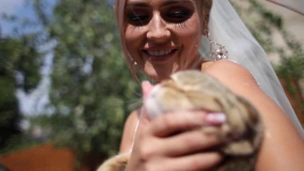 Schöne Braut mit ihrem niedlichen Katze. Mädchen streicheln. Blondes Haar Mädchen spielen mit ihrer Katze
