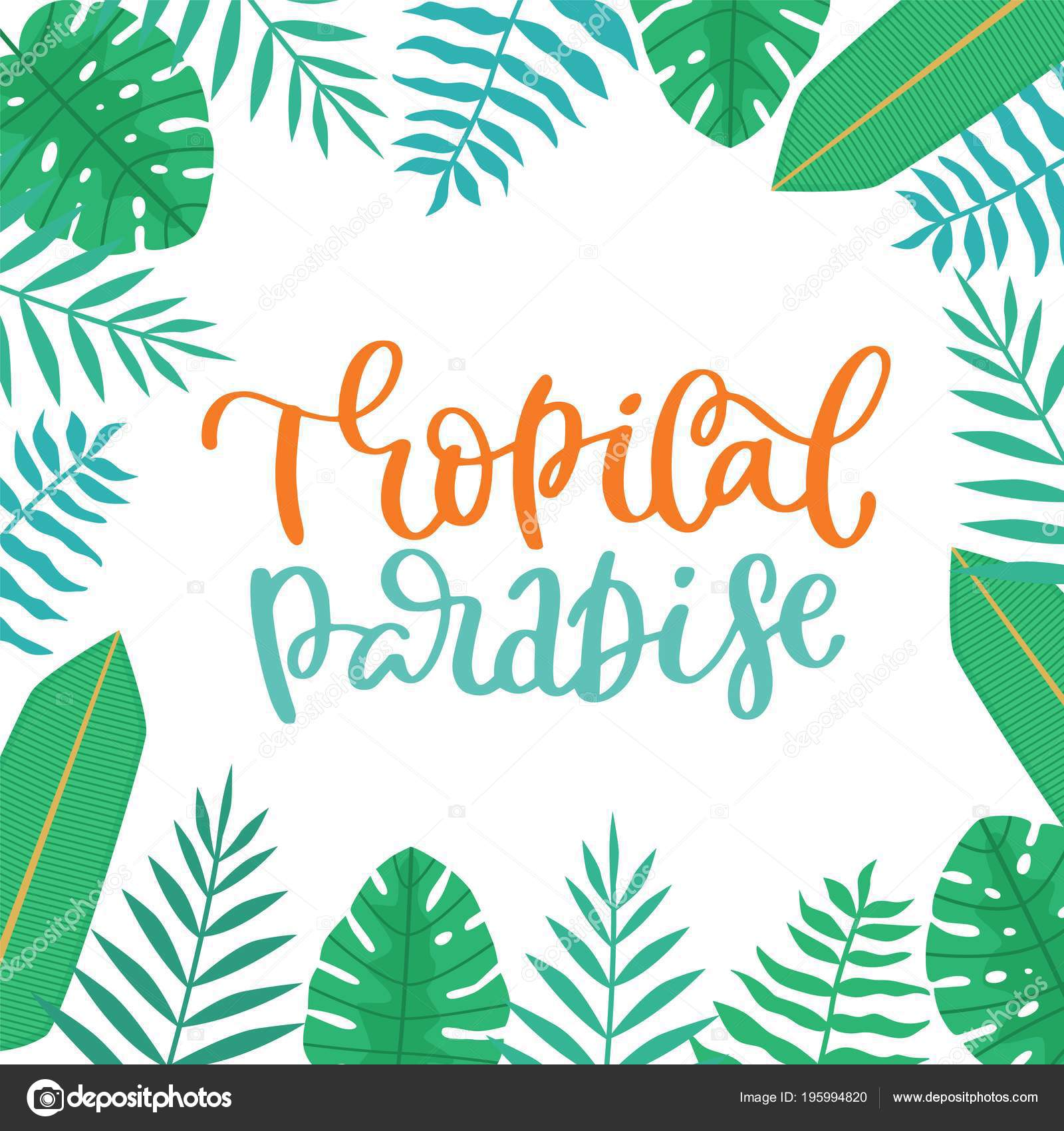 Tropical Quote Tropical Paradise Summer Inspiration Quotes Lettering Phrases Tropical Leaves Calligraphy Stock Vector C Maryart 195994820 Tropical forest collection.perfect for wedding,frame. https depositphotos com 195994820 stock illustration tropical paradise summer inspiration quotes html