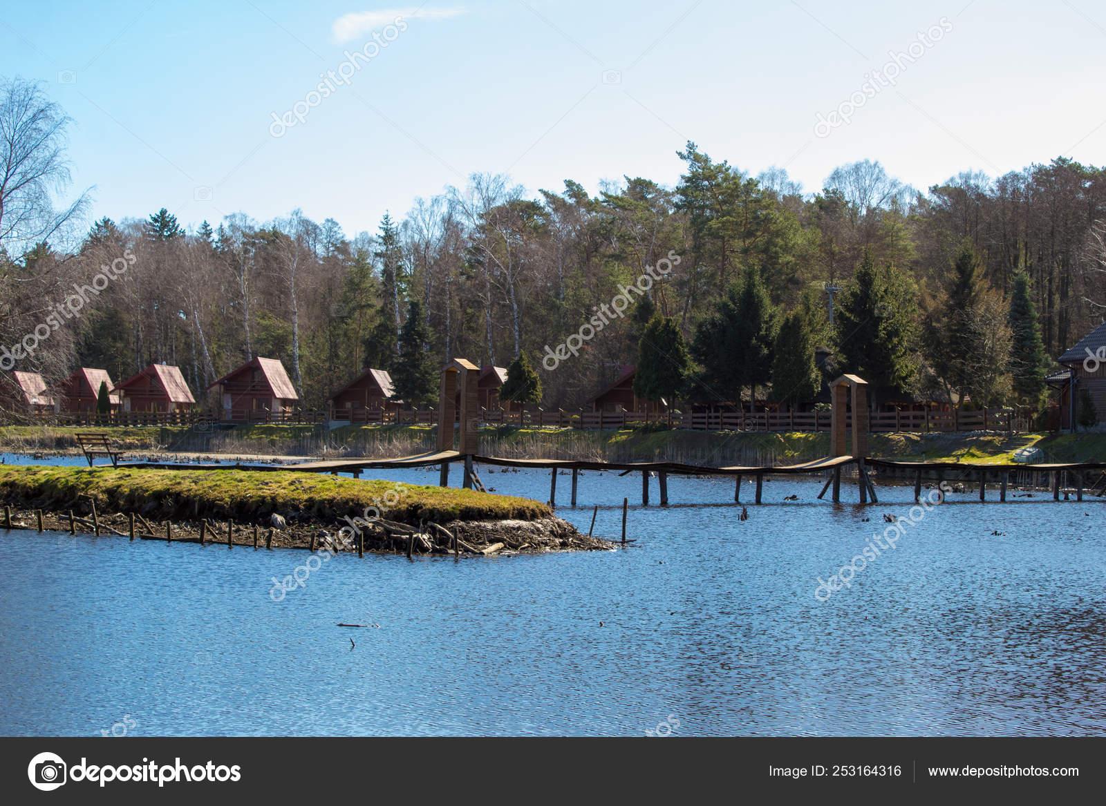 https://st4.depositphotos.com/22531124/25316/i/1600/depositphotos_253164316-stock-photo-beautiful-place-lake-pine-forest.jpg