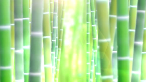 Bamboo forest design. Tropical asian plant background. Nature. Japanese bamboo grass oriental illustration.