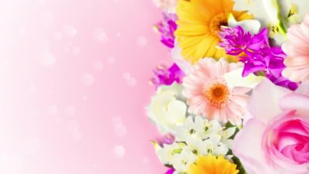 Sok színes virág hurok animáció. Szivárvány színű virágok. A kert tele van színes virágokkal.