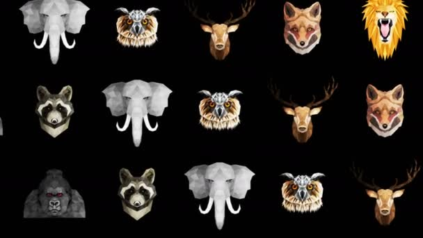 Sbírka různých zvířat. Symbol zoo. Nízké mnohoúhelníkové ikony. Lev, Gorila, Zebra, Mýval, Liška, Slon, Jelen, Sova. Animace geometrické smyčky.