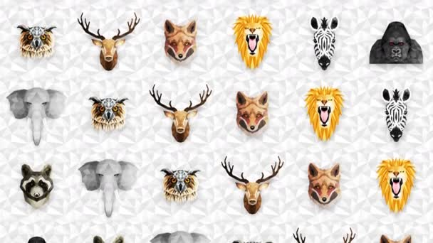 Collection of different animals. Zoo symbol. Low polygon icons. Lion, Gorilla, Zebra, Raccoon, Fox, Elephant, Deer, Owl. Geometric loop animation set.