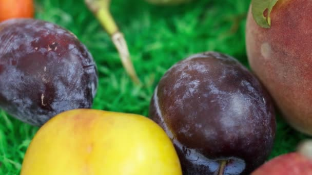Fresh ripe plums on kitchen table