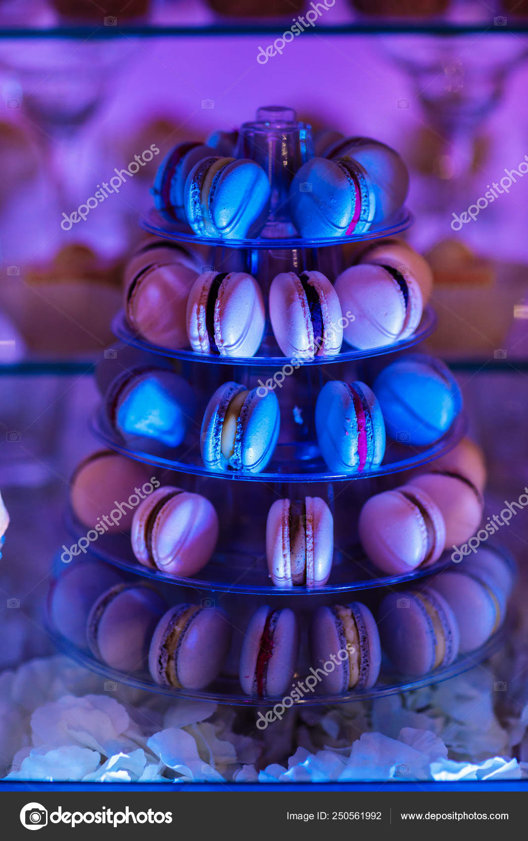 Pleasant Colorful Macarons Stand In Round Transparent Weight As Part Complete Home Design Collection Epsylindsey Bellcom