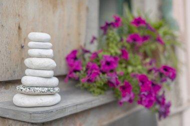 Zen stone in garden