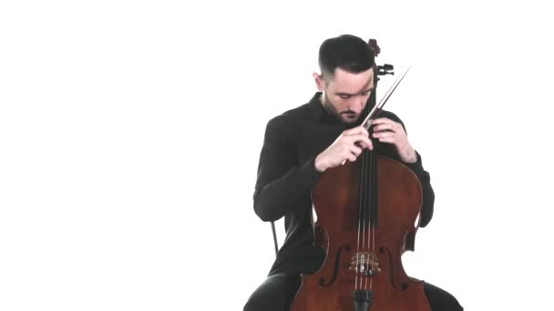 young handsome man in a black shirt masterfully plays the classic cello. Pizzicato technique. Symphonic music concert. Isolated. Medium long shot