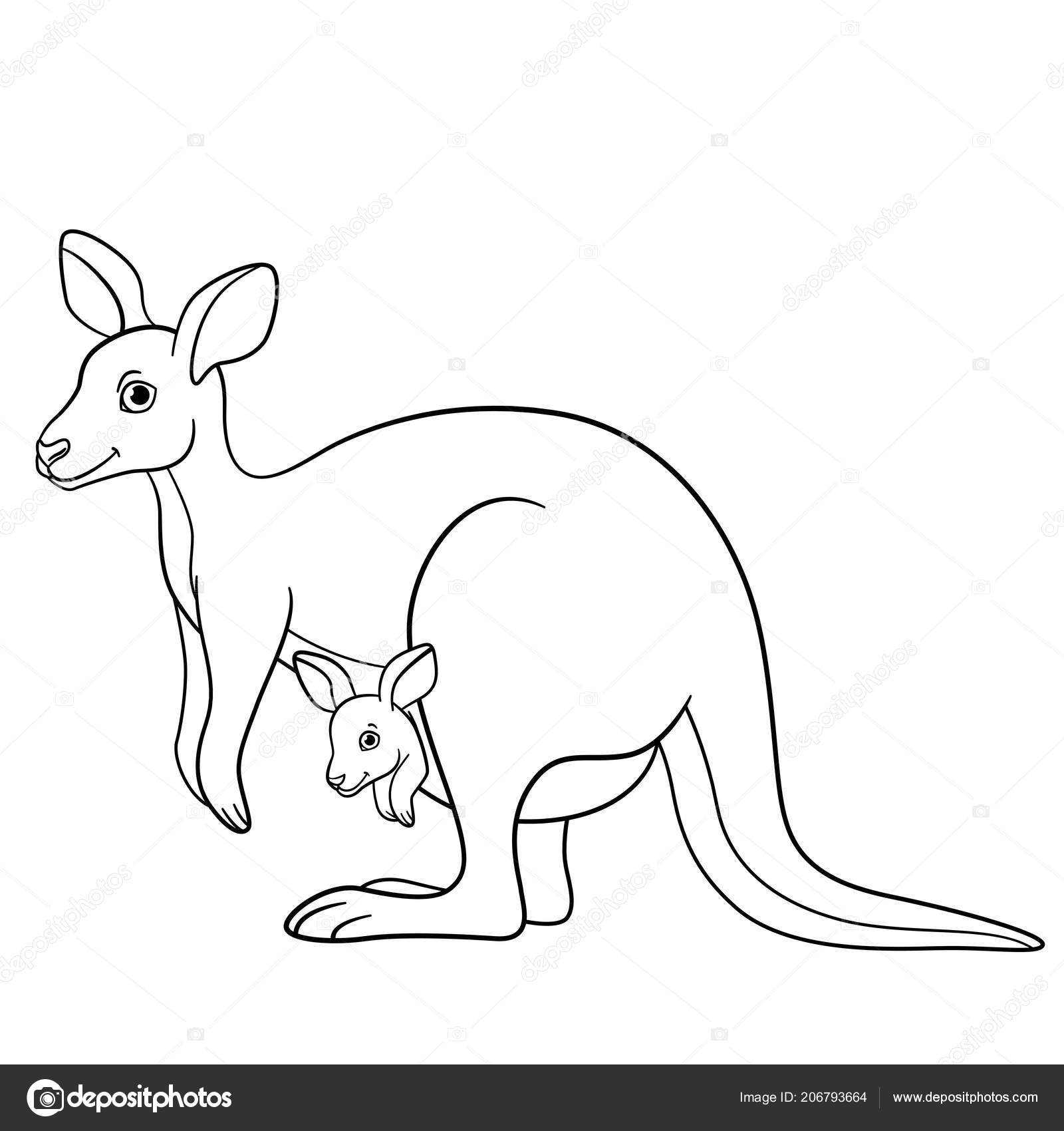 Coloring Pages Mother Kangaroo Her Little Cute Baby Stock Vector