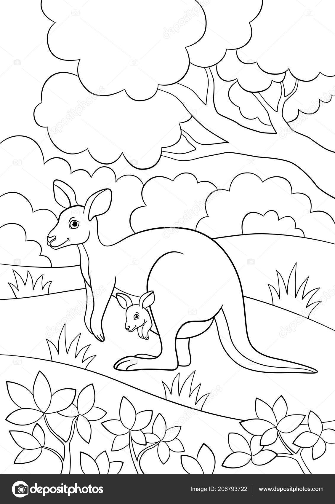 Coloring Pages Mother Kangaroo Her Little Cute Baby — Stock Vector ...