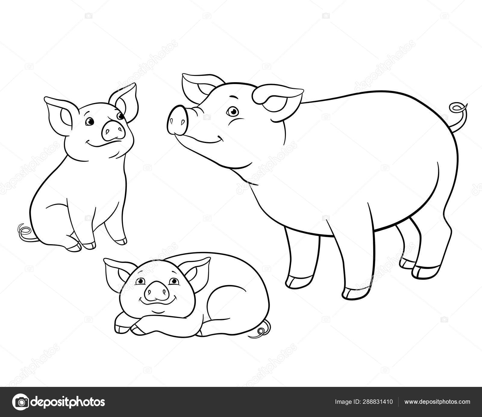 Coloring pages. Mother pig with her two little cute piglets ...