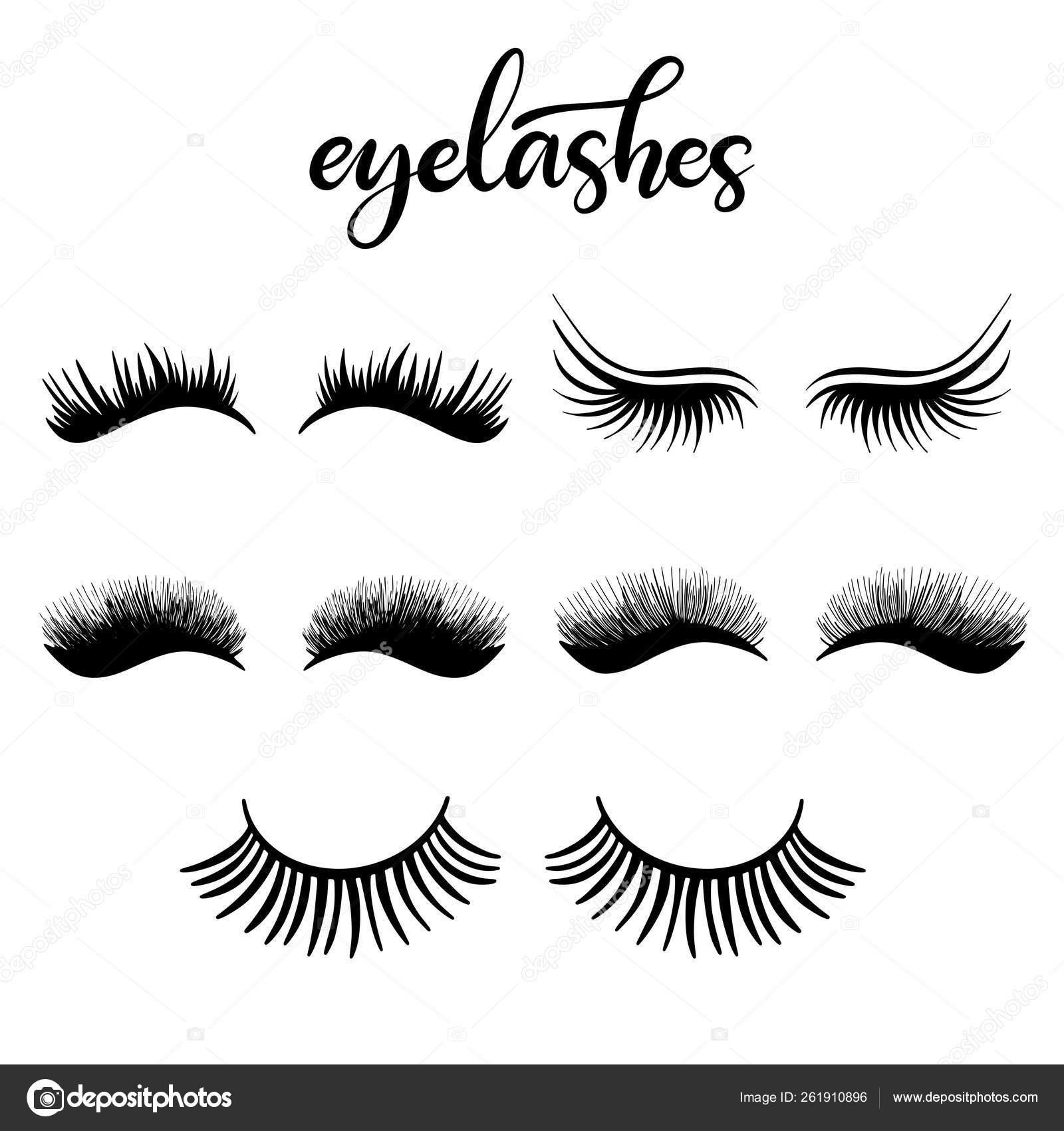 56a88333083 Lashes lettering vector illustration for beauty salon, fashion blog, logo,  false eyelashes extensions maker, brow master, professional makeup artist.