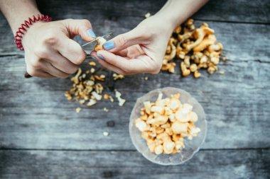 Farm holidays: Woman is preparing delicious chanterelle mushroom
