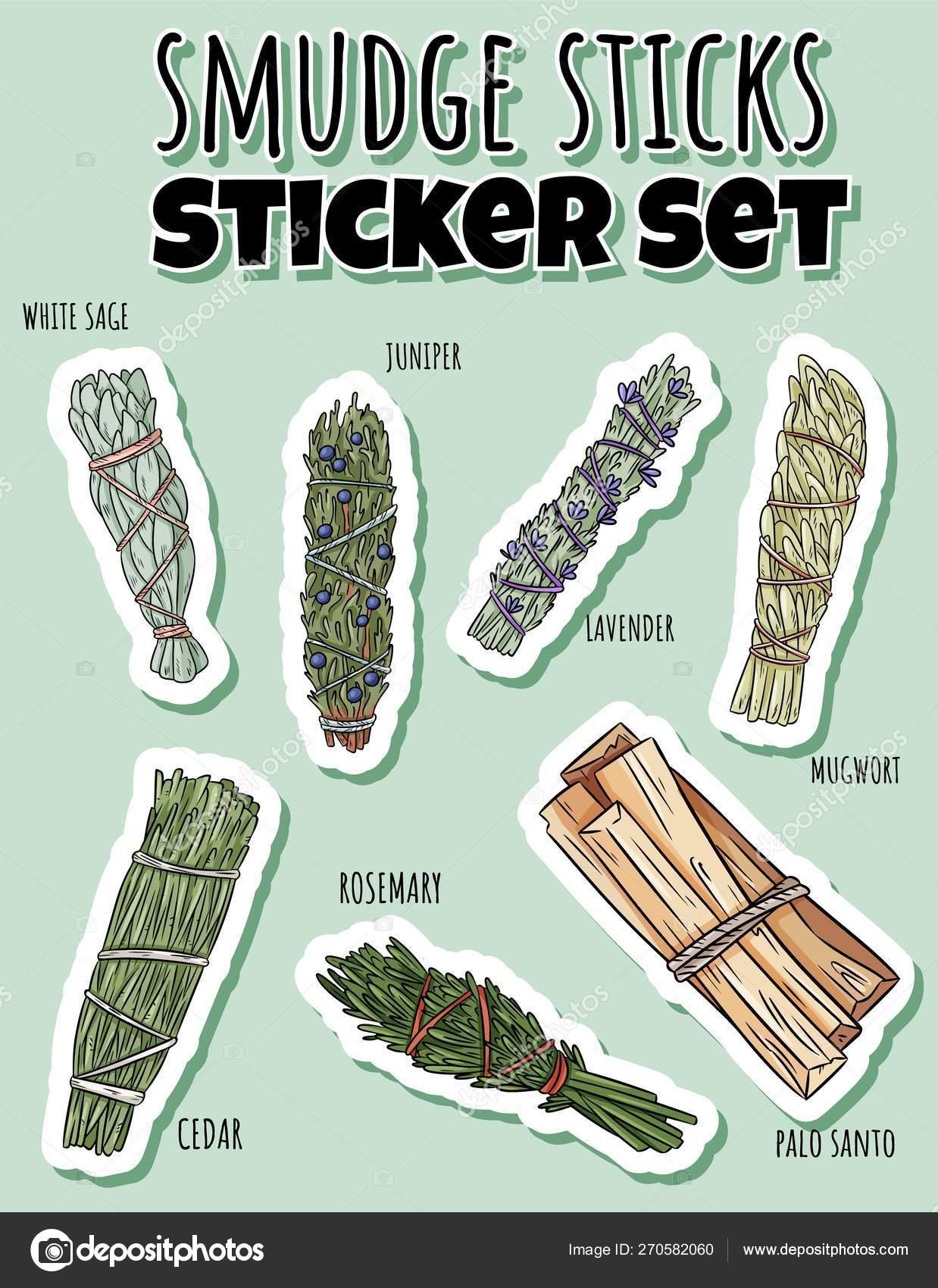 Sage smudge sticks hand-drawn sticker set  Herb bundles label
