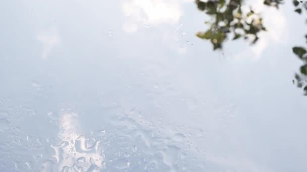 Water droplets and circles up close.