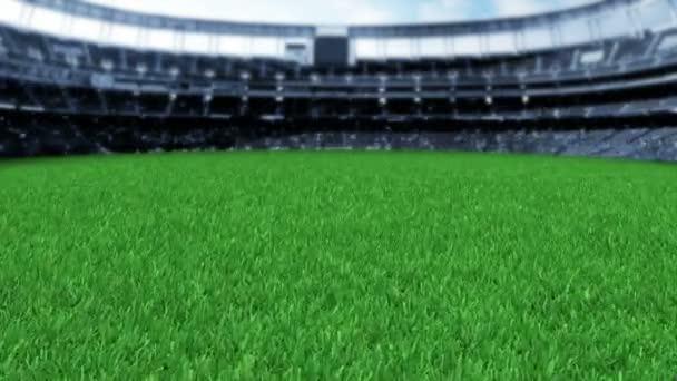 video z trávy Stadiam