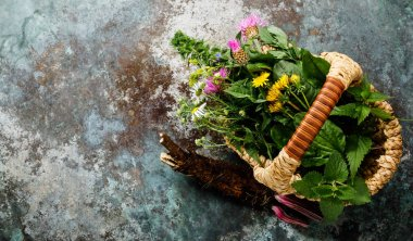 Meadow and Medicinal herbs and burdock root for clean eating, copy space