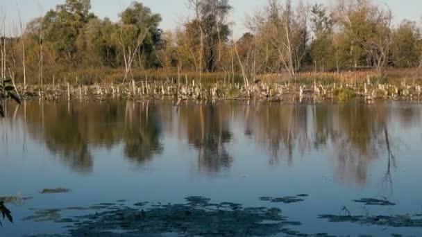 a nyugodt természeti táj, a folyó festői felvétel