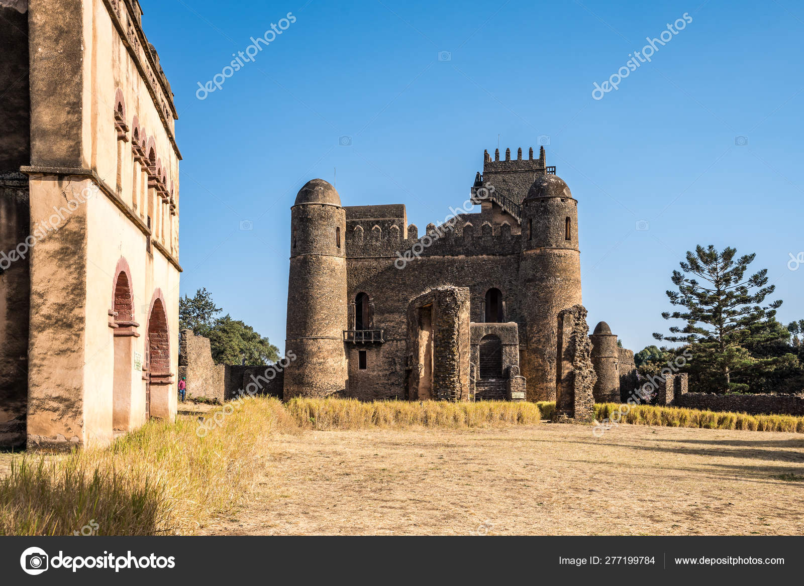 Fasil Ghebbi is the remains of a fortress-city within Gondar