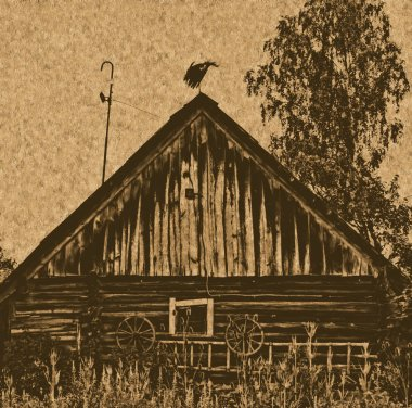 White stork on the roof of a building