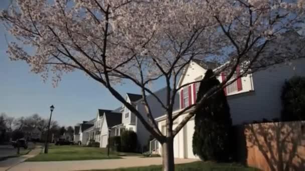 video z příměstské čtvrti