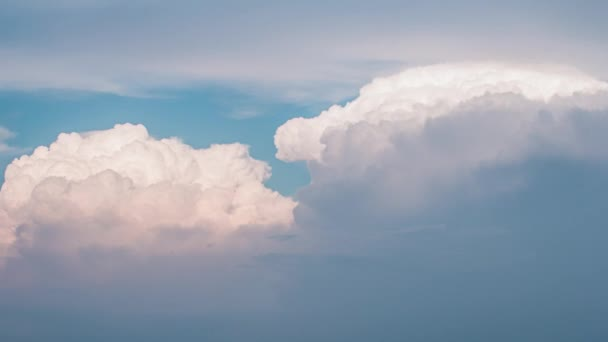 Flight through the clouds of paradise 4k timelapse video without birds and insects