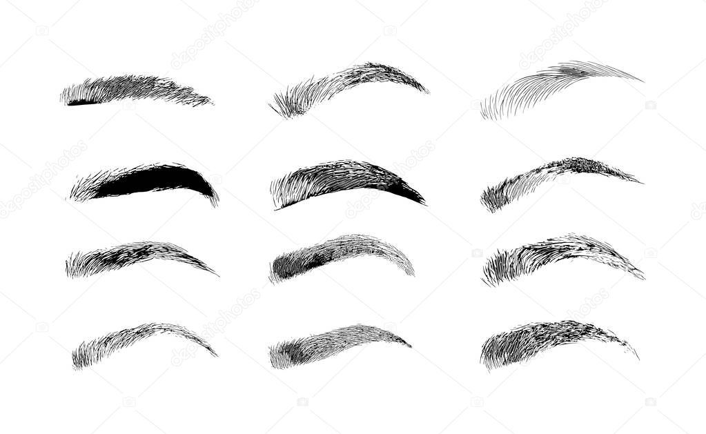 Eyebrow Shapes Various Types Of Eyebrows Classic Type And Other Trimming Vector Illustration With Different Thickness Of Brows Premium Vector In Adobe Illustrator Ai Ai Format Encapsulated Postscript Eps Eps Format