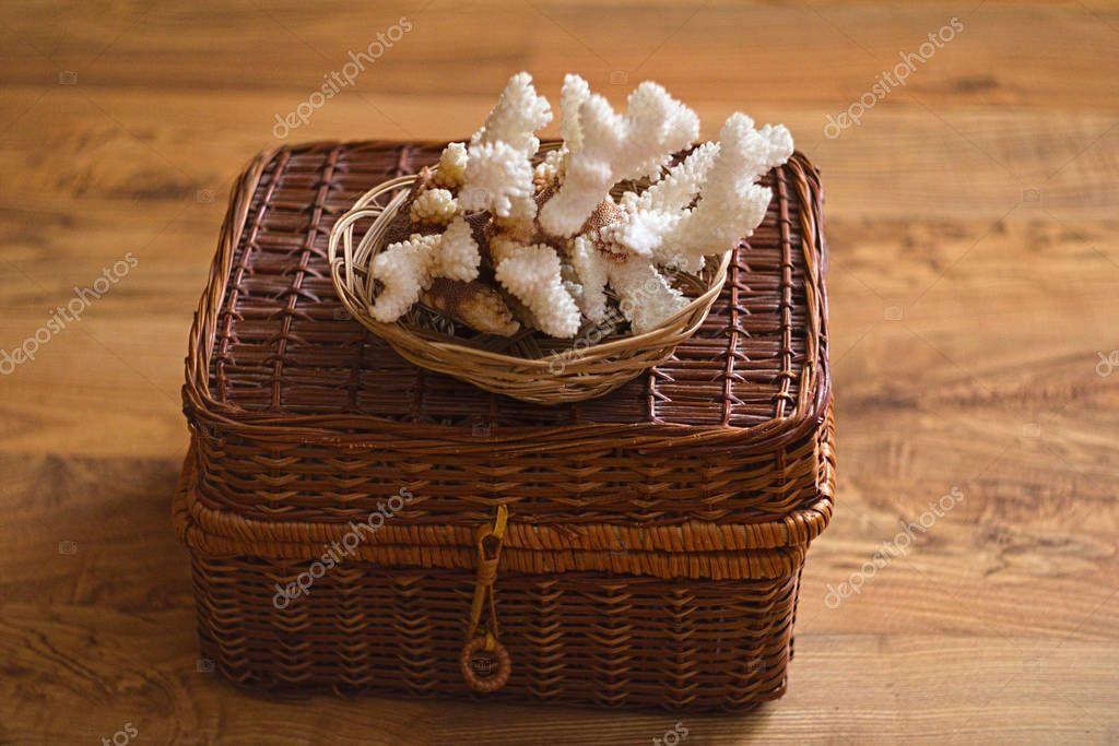 White Sea Coral on a wicker box