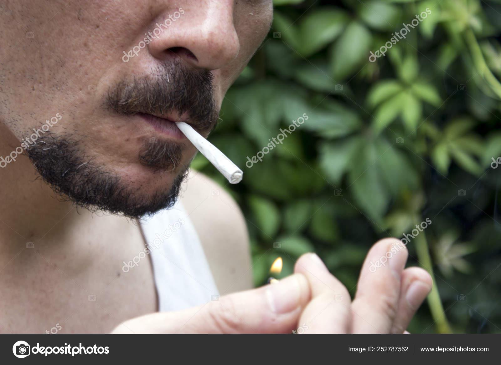 Великие люди курившие марихуану в суздале конопля
