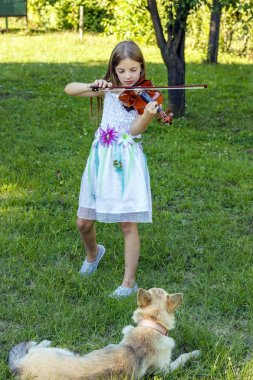 Dog watching girl playing violin in nature