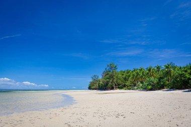Low tide in beach borneo malaysia landscape