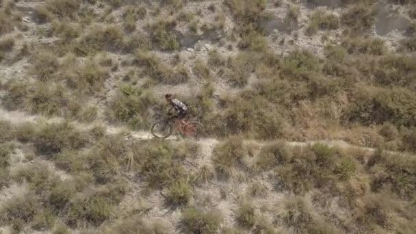 Horský biker, který za slunečného dne jede po stezce