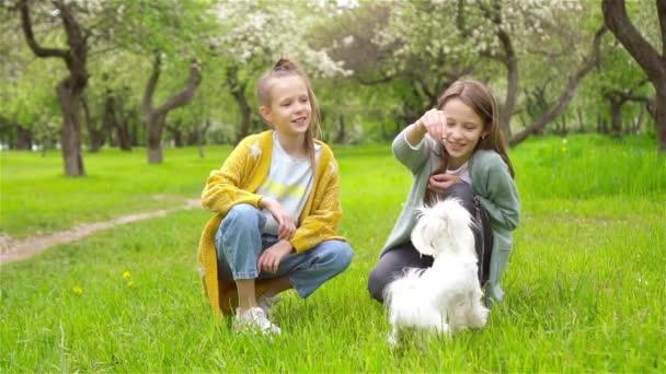 Küçük gülümseyen kızlar parkta oynuyorlar ve yavru köpeklere sarılıyorlar.