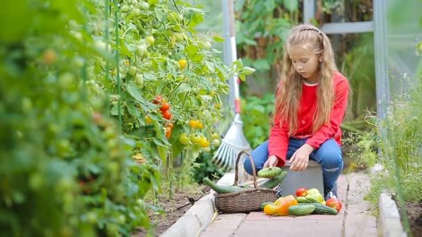 Rozkošná holčička sbírající okurky, papriky a rajčata ve skleníku.