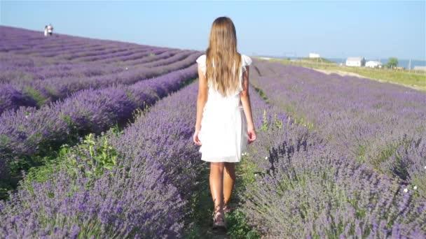 Aranyos lány levendula virág mező naplementekor lila ruhában
