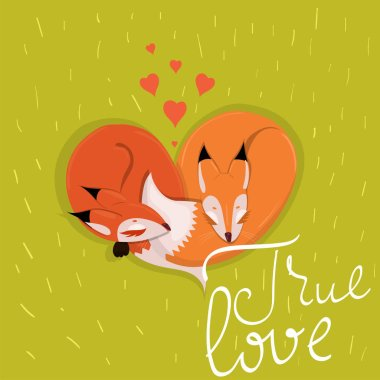 Card with cute enamored foxes sleeping on the meadow vector stock vector