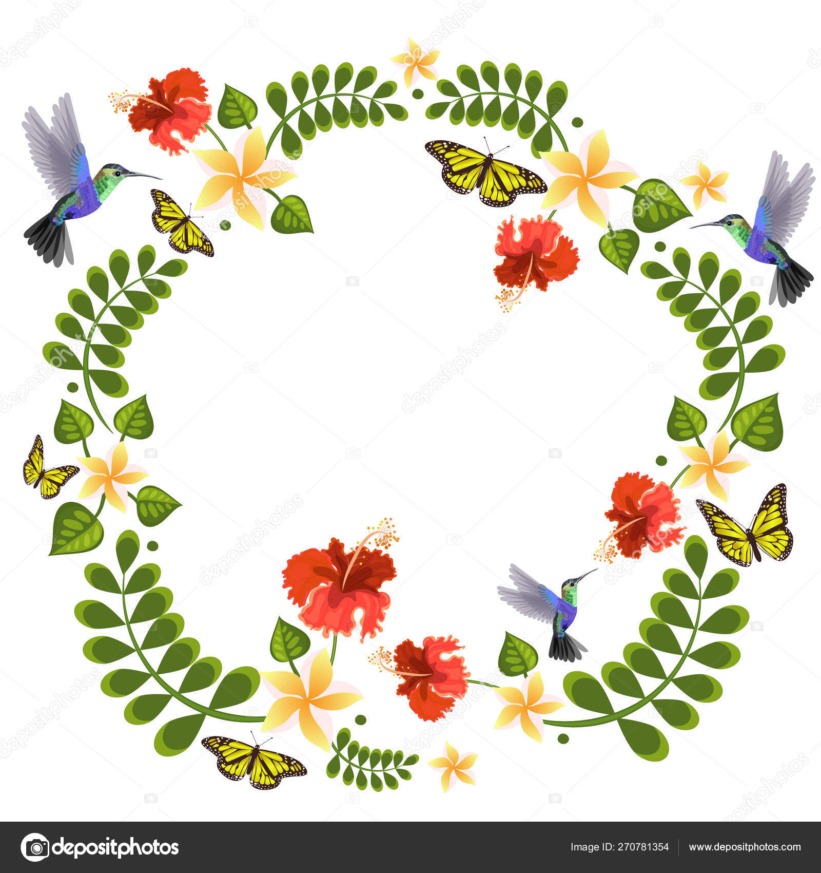 Vector Illustration With Hummingbirds Butterflies Plumeria And