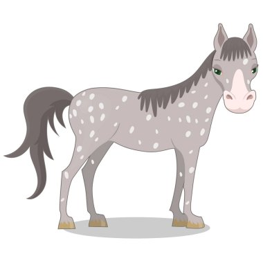 Gray spotted horse. Cartoon style. Vector illustration isolated on white background.