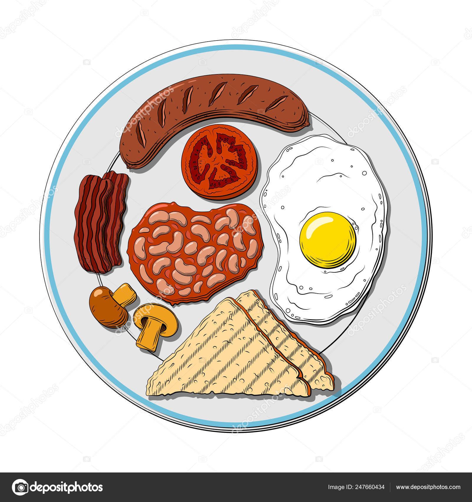 Hand Drawn Vector Illustration Full English Breakfast Plate Sausage Egg Vector Image By C Tyumentsevaanna Vector Stock 247660434