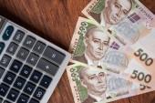 Ukrajinská měna zblízka