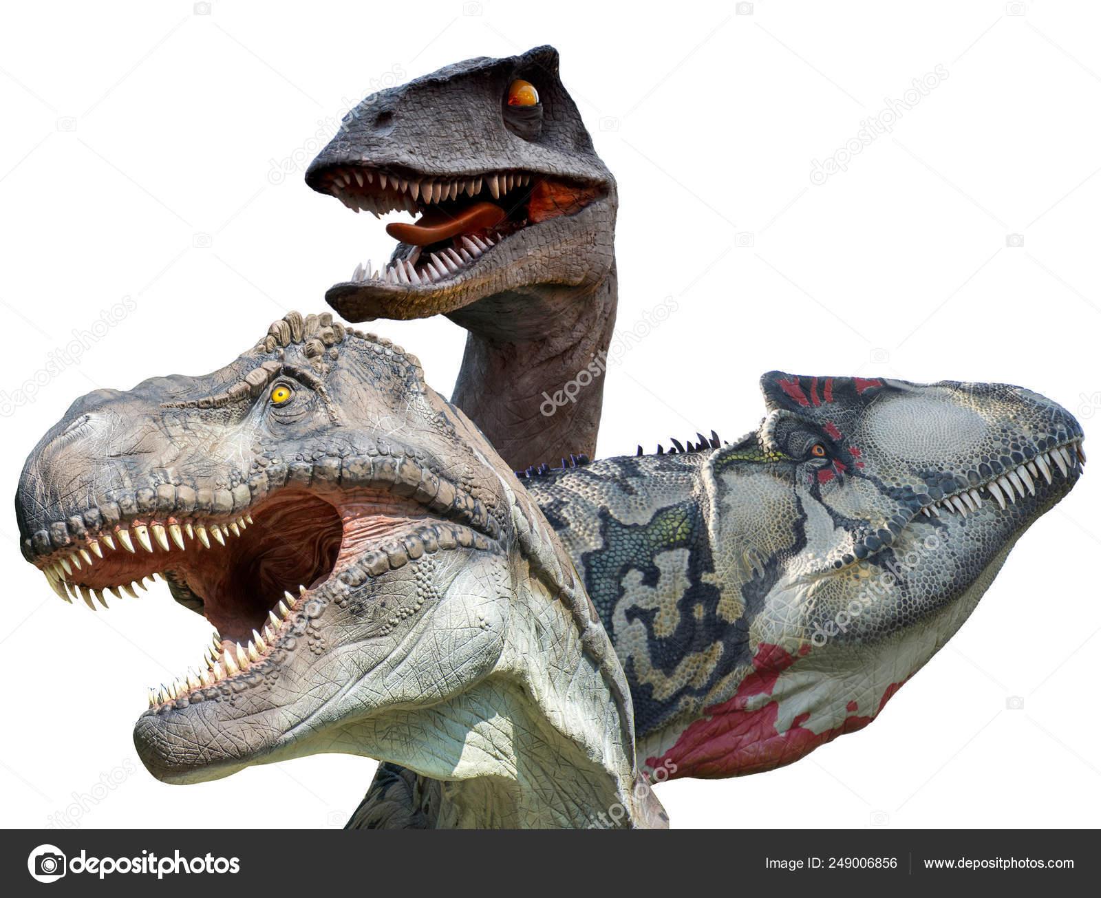 Carnivorous Dinosaurs Isolated White Background Tyrannosaurus Rex Allosaurus Velociraptor Stock Photo C Supercic 249006856 ✓ gratis para uso comercial ✓ imágenes de gran calidad. carnivorous dinosaurs isolated white background tyrannosaurus rex allosaurus velociraptor stock photo c supercic 249006856