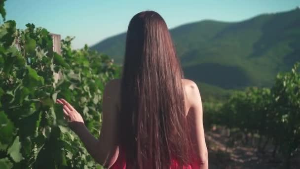Mladá dívka v červených šatech prochází vinici. Svobodná dívka s dlouhými vlasy prochází vinici.