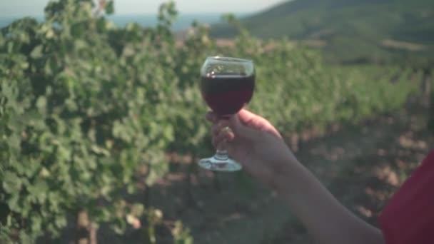 Dívka v červených šatech stojí v vinici. Dívka s dlouhými vlasy v brýlích pije červené víno v vinici.