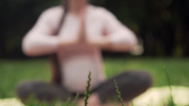 A pregnant woman practices yoga in the park sitting on a rug, sitting in the lotus position and meditates.