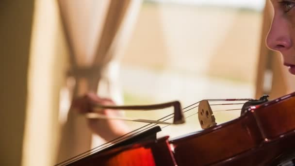 Bogen-Reisen auf Geige Saiten hautnah 4k. Person, die Wiedergabe von Musik auf Geige, nahe bis auf Saiten während Bogen reiben gegen sie und produzieren Klang