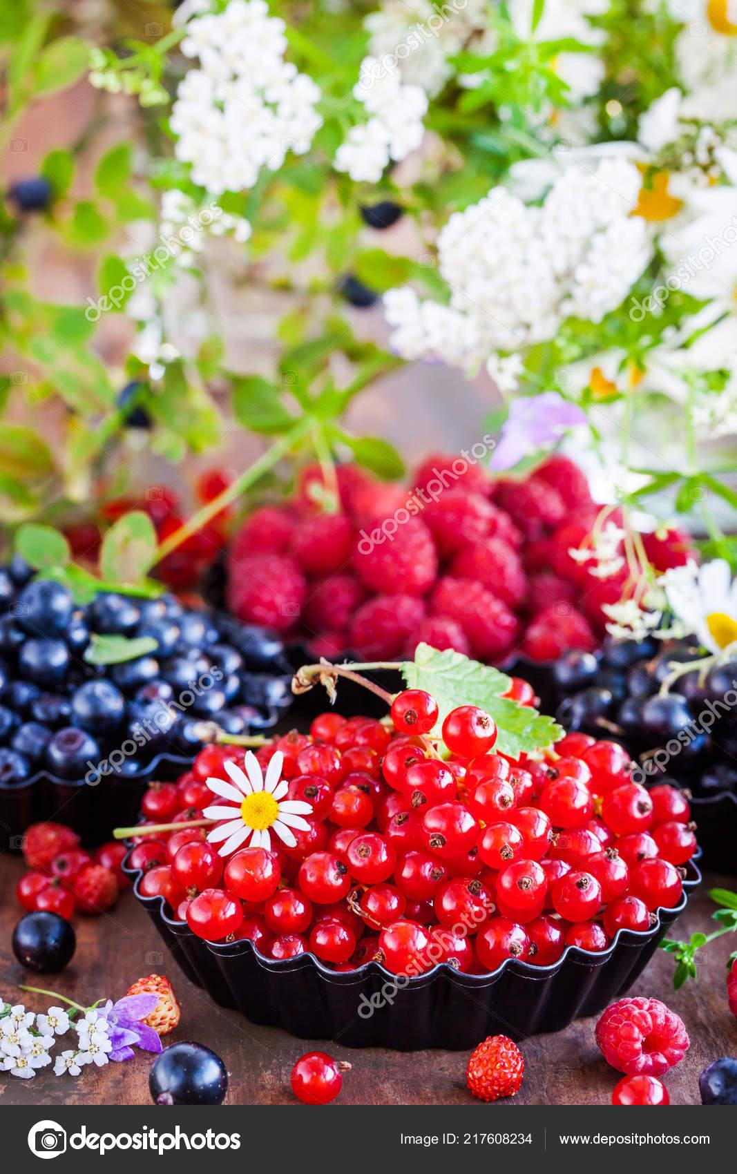 Die Früchte sind 6 bis 10 mm große, breit eiförmige Beeren mit zwei.