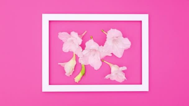 Fehér keret fehér virágokkal rózsaszín témában. Állj!
