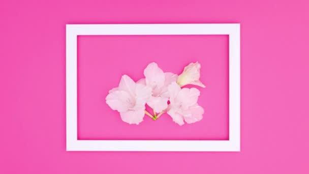 Weißer Rahmen mit weißen Blüten auf rosa Motiv. Stop-Motion