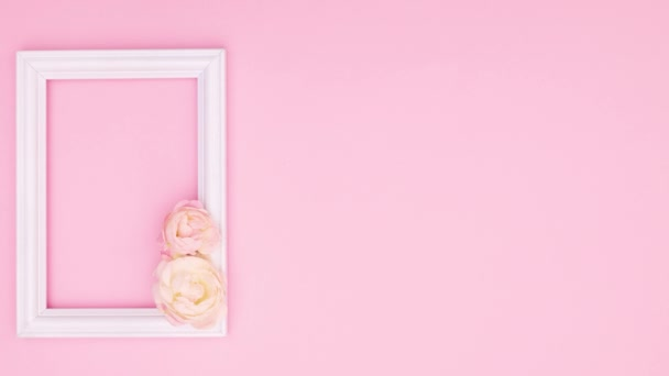 Beautiful pink roses and romantic frame for text on pink theme. Stop motion