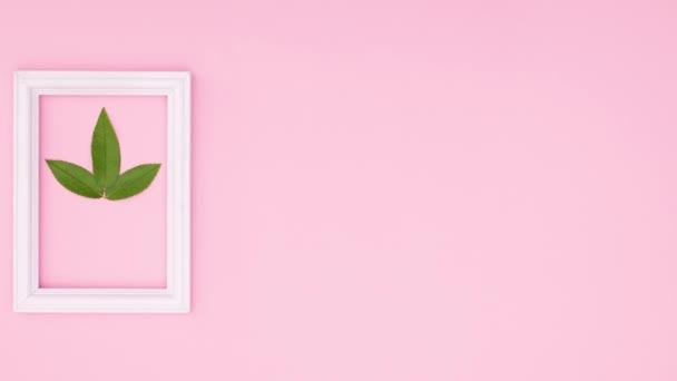Zelený list a bílý romantický rámeček na růžové téma. Zastavit pohyb