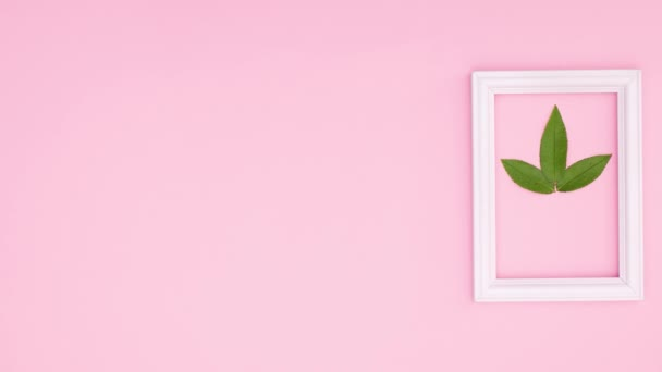 Green leaf and white romantic frame on pink theme. Stop motion